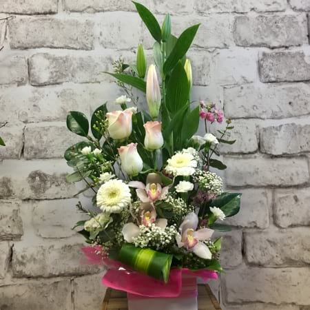 Forever Young Arrangement