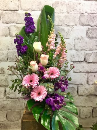 Brontie Arrangement