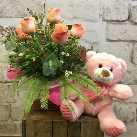 Colombian Roses with a Cuddly Bear