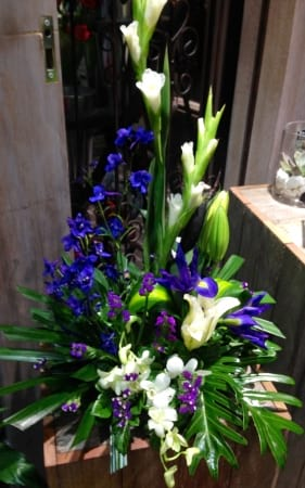 Blue Moon Arrangement