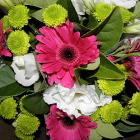 Vibrant flower bouquet in pink & green blooms
